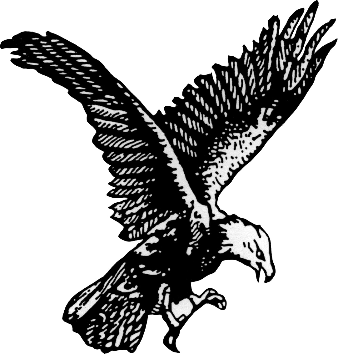 Black Eagle clipart soaring eagle Panda soaring%20eagle%20clipart Clipart Drawing Free