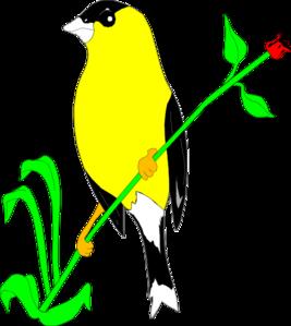 Goldfinch clipart Goldfinch Animal art vector online