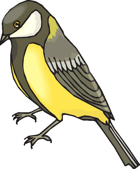 Goldfinch clipart Download at Art  com