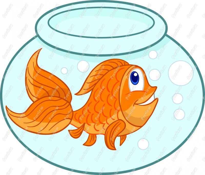 Goldfish clipart orange color  Images Goldfish Clipart