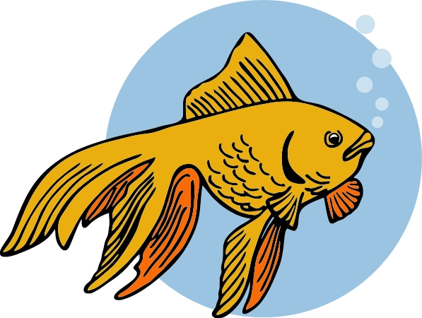 Fins clipart different fish Free goldfish%20clipart%20black%20and%20white Images Clipart Clip
