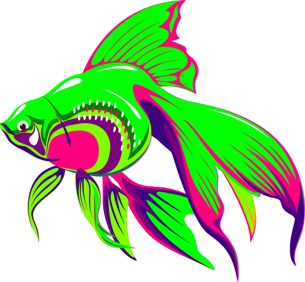 Neon clipart rainbow fish Car on Pictures Art