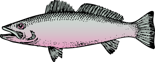 Larger clipart fish product For Images Clipart Kids Clipart