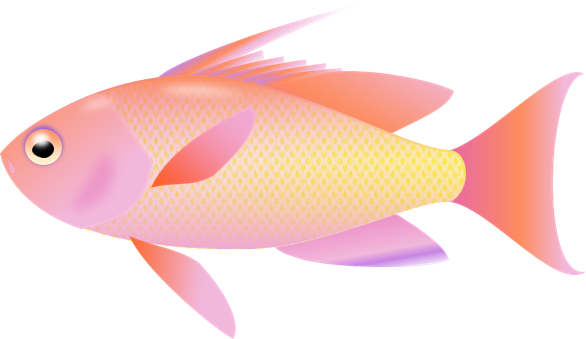 Gallery clipart transparent background Fish Fish photo#27 Background background