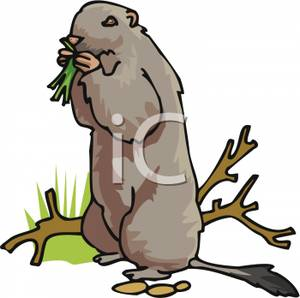 Gopher clipart Gopher Clipart Picture A Picture