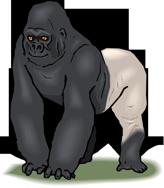 Gorilla clipart Clipart Silverback Gorilla Free