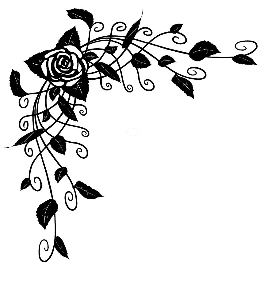 Drawn rose bush rose vine Rose Drawing Free Vine Download