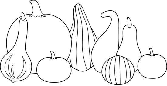 Gourd clipart Gourds Free Thanksgiving Line Colorable