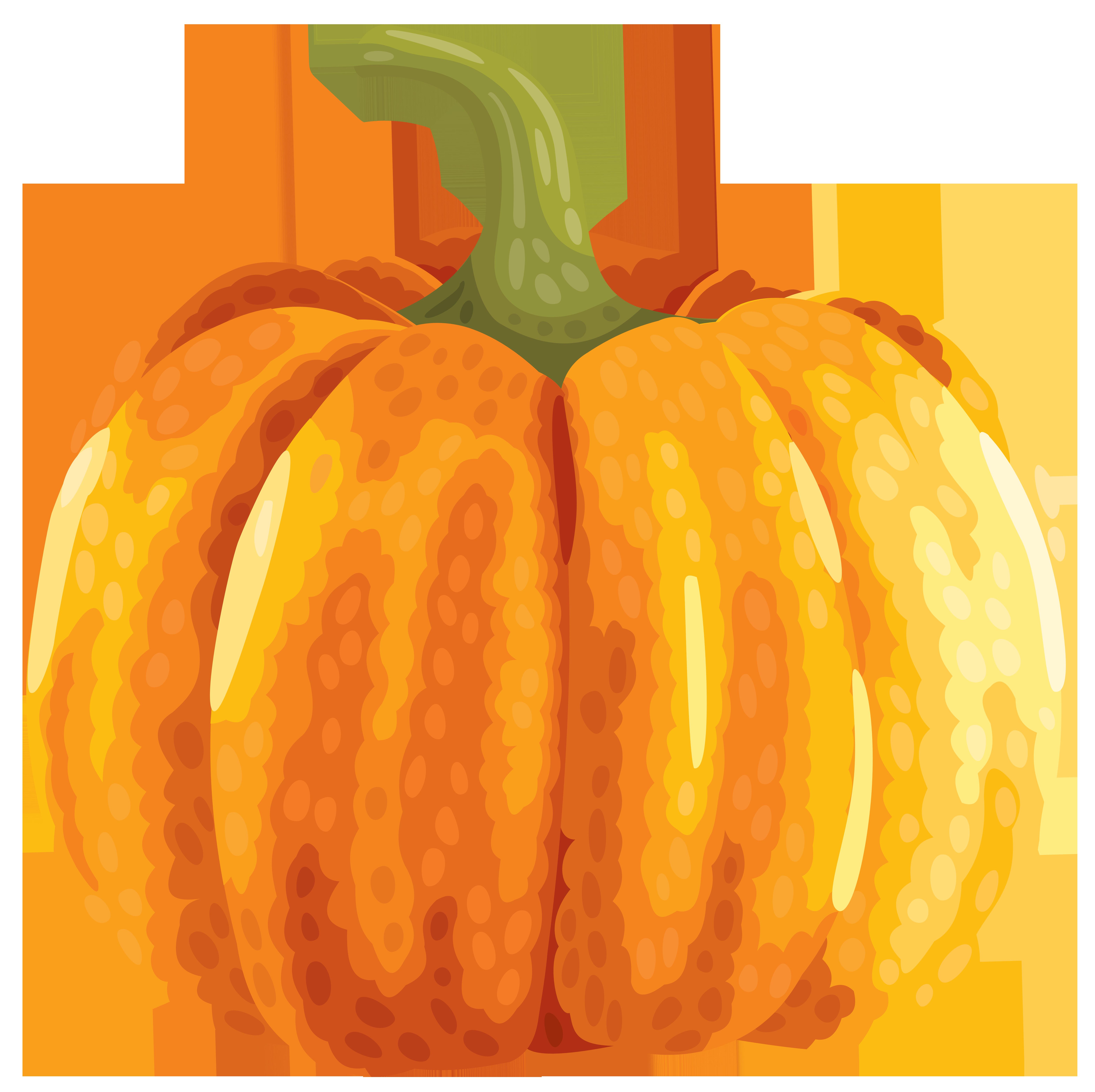 Gourd clipart autumn pumpkin Pumpkin ? Gallery Clipart full