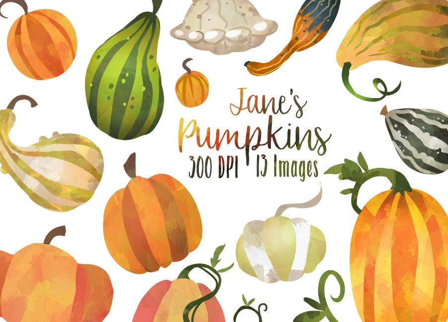 Gourd clipart autumn pumpkin Clipart is Pumpkin Watercolor Instant