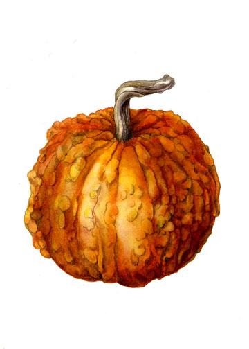 Gourd clipart bumpy In Mindy by Painting Lighthipe