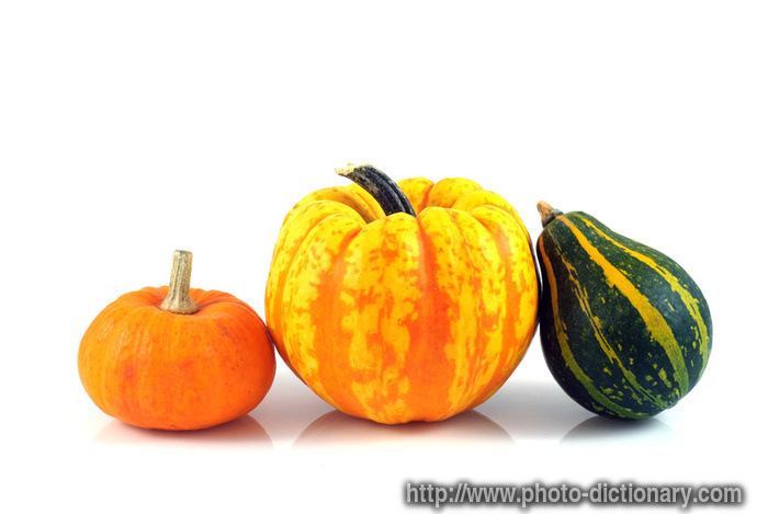 Gourd clipart yellow squash Gourds Dictionary at Photo definition