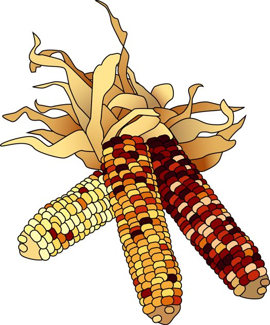 Gourd clipart fall leave Indian Corn for Autumn Clip
