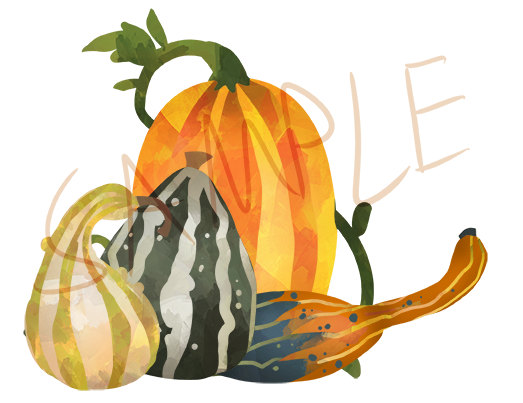 Gourd clipart orange pumpkin Watercolor Clipart 50% is Pumpkin