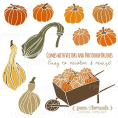 Gourd clipart green pumpkin Squash Photoshop Green Brown //