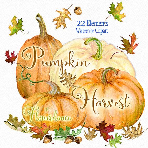 Gourd clipart harvest Clipart autumn Pumpkin Pumpkin watercolor