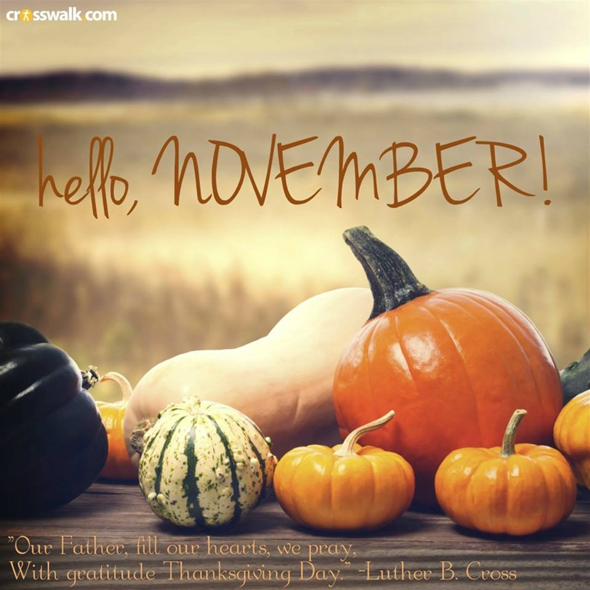 Gourd clipart november  images DownloadClipart graphics org