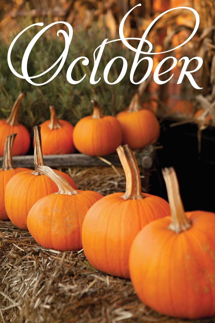 Gourd clipart october Fall Happy #fastfixin #bestmonthever #fall