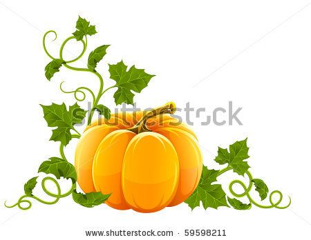 Gourd clipart orange pumpkin Green pumpkin stock Home green