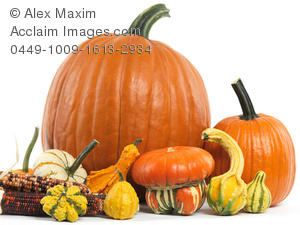 Gourd clipart orange pumpkin Clipart photos pumpkins and stock
