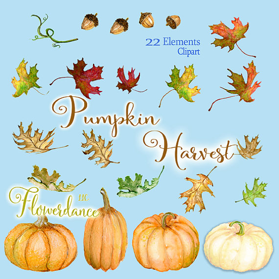 Gourd clipart orange pumpkin Clipart clipart Fall is leaf