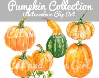 Gourd clipart pumpkin spice Art watercolor Pumpkin Fall Hand