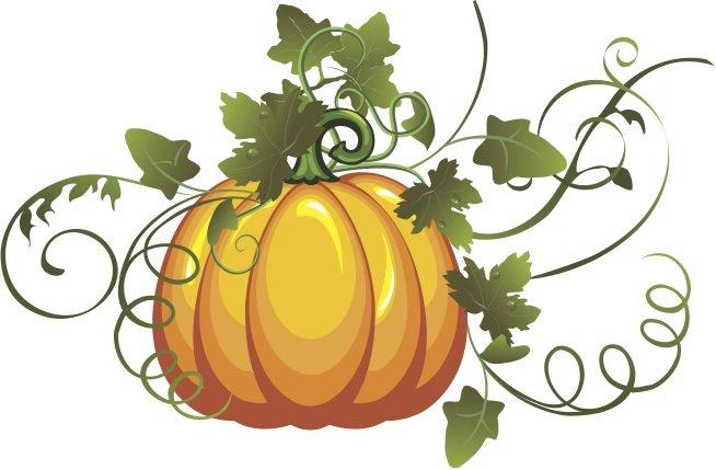 Drawn pumpkin vine Pumpkin Clipart pumpkin%20vine%20art Drawing Images