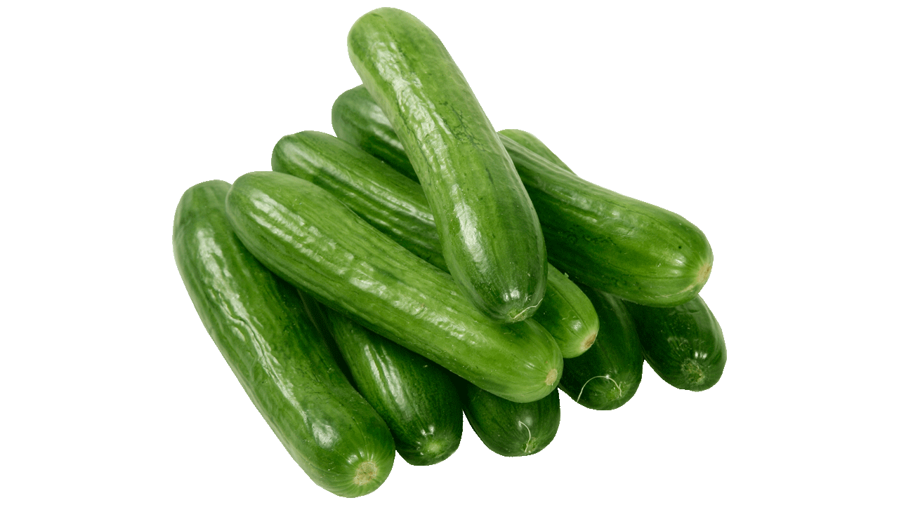 Gourd clipart single vegetable Cucumber Art free Cucumber with