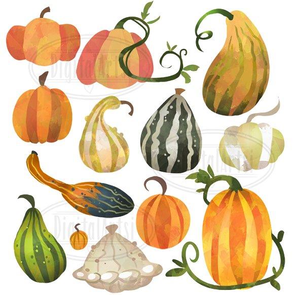 Gourd clipart small pumpkin And  Market ~ Pumpkins