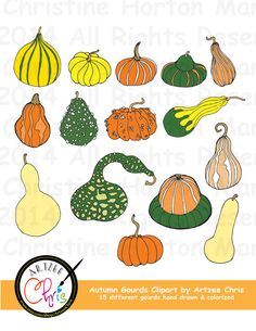 Gourd clipart squash Gourds by Fall by ArtzeeChris