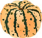 Gourd clipart squash Some Sweet Crookneck Clip Dumpling