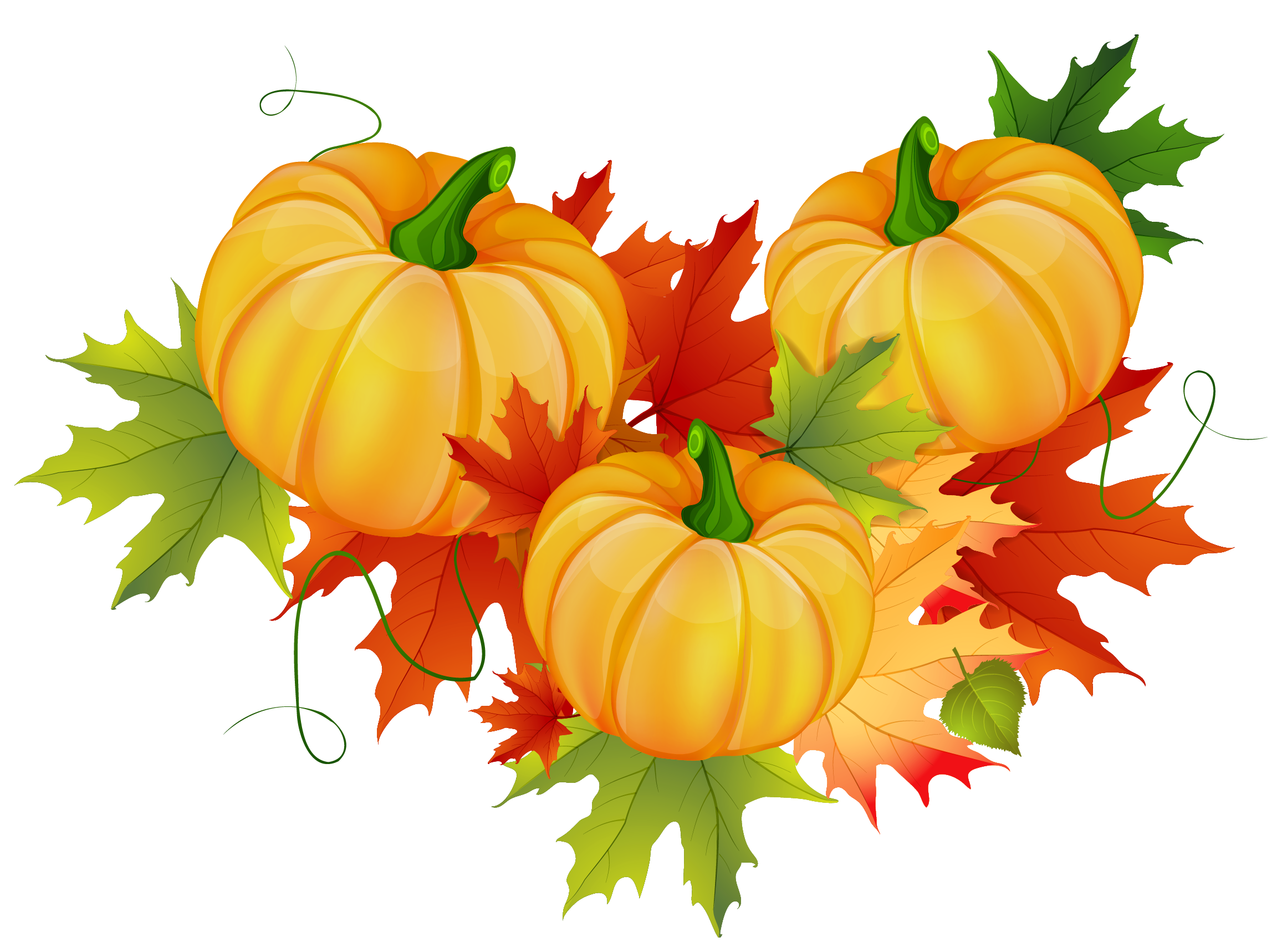 Gourd clipart thanksgiving food Com Download Pic Images Thanksgiving