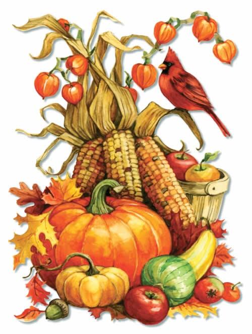 Gourd clipart thanksgiving food Pinterest best Illustrations Thanksgiving Fall/Thanksgiving