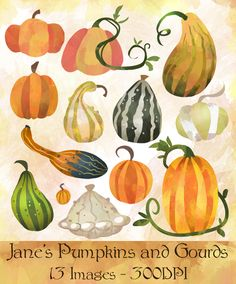 Gourd clipart thanksgiving food Gourd!  Oh Fall and