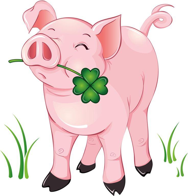 Graduation clipart pig A illustrations with Pinterest best