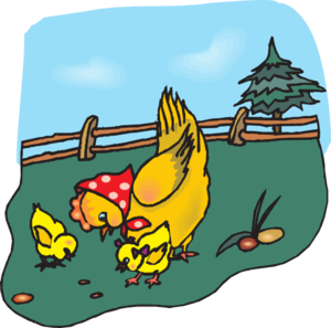 Grain clipart chicken eats Chickens Chickens Feed Clip clipart
