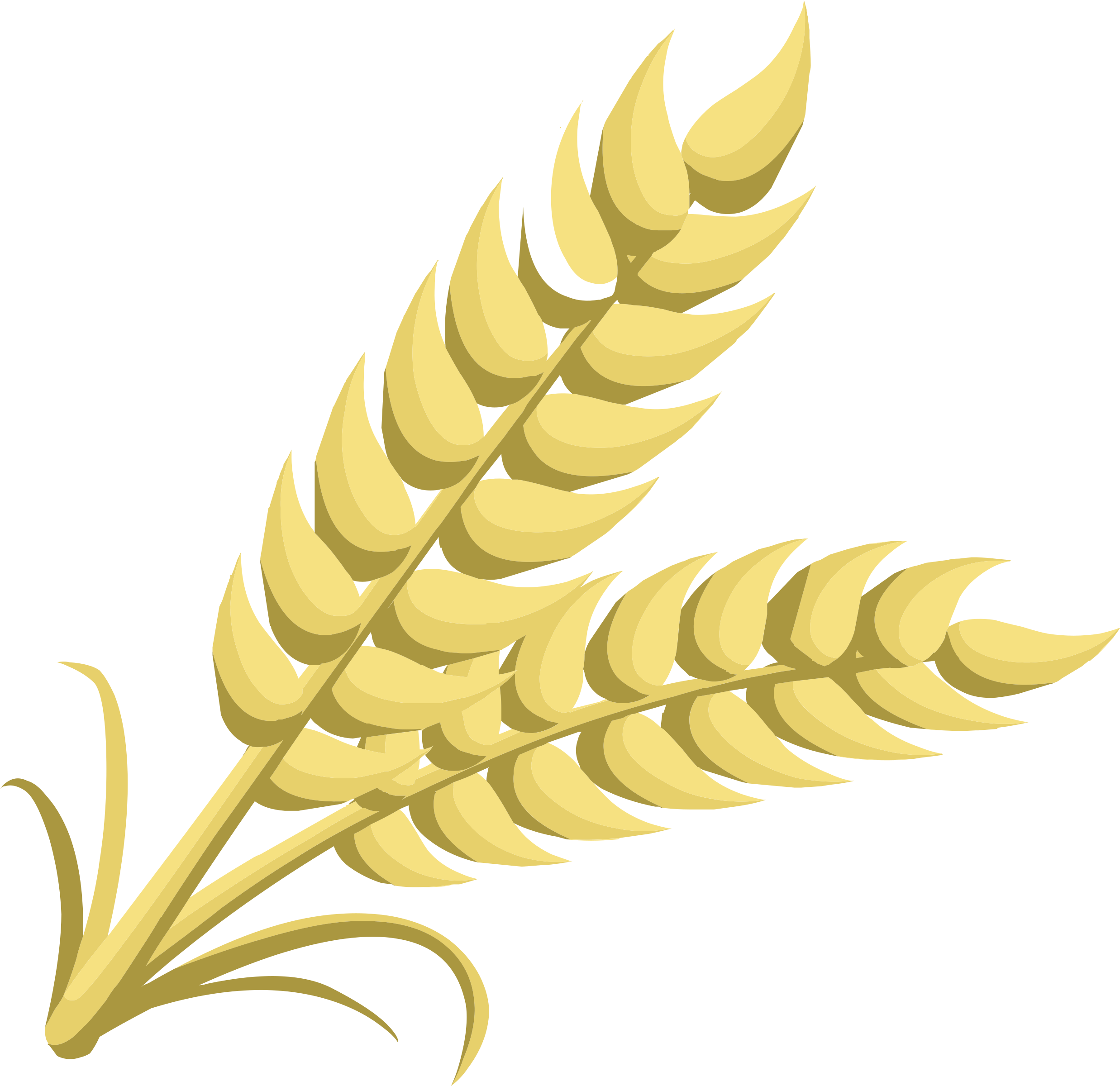 Grains clipart #8