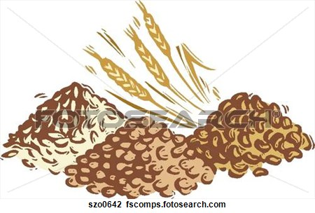 Grains clipart #1