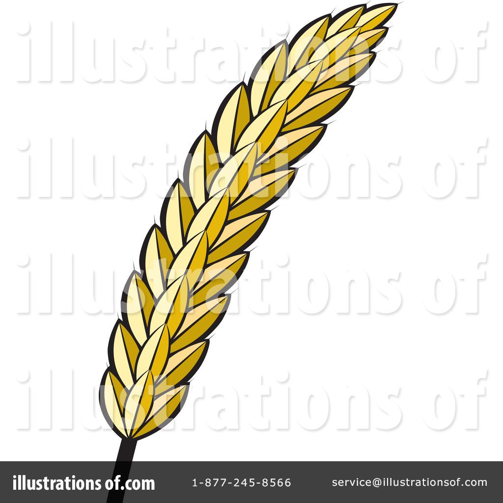 Barley clipart wheat Clip Free Clipart Download admin