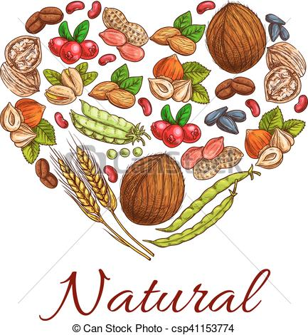 Grain clipart healthy food Healthy shape berries Healthy Vectors