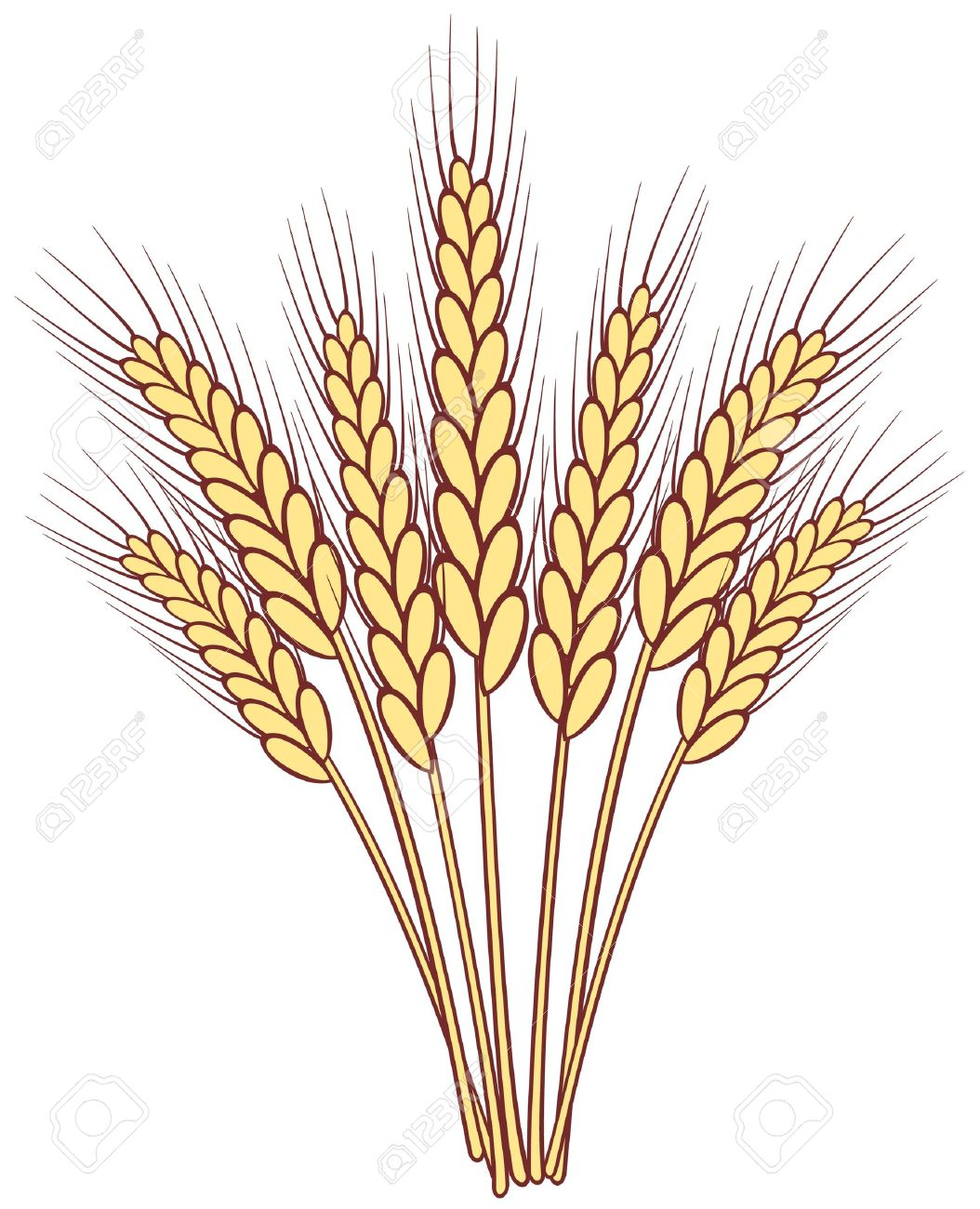 Barley clipart wheat Download clipart Wheat Download clipart