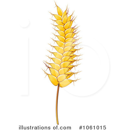 Grain clipart wheat stalk (RF) Wheat Stock Wheat Illustration