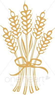 Grain clipart wheat stalk Art Wheat Fall Clip Wheat