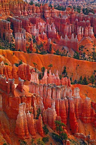 Grand Canyon clipart peter lik Trip Park Utah Canyon National