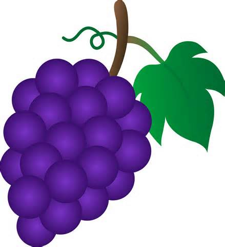 Grape clipart mango fruit And on art free vines