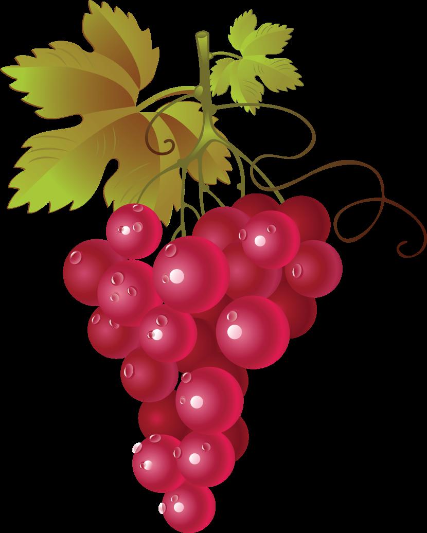 Currants clipart Art grapes Grapes clipart com