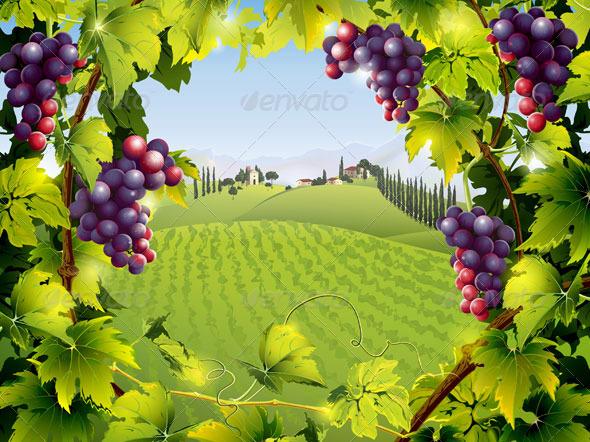 Grape clipart bagay Landscape vines Vines with Grape