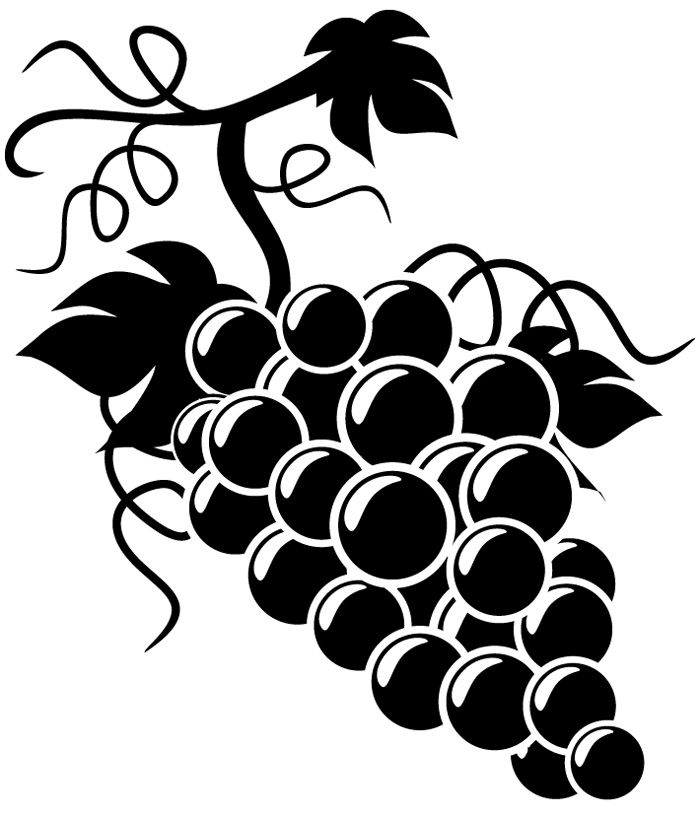Grape clipart black and white On wine clipart Best Vineyard