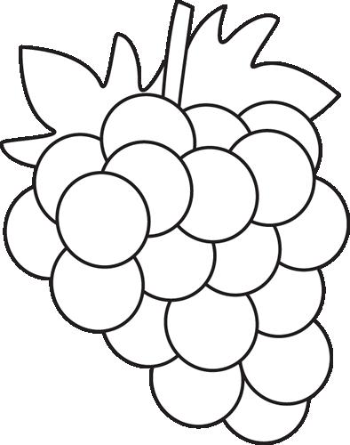 Black & White clipart grape Clipart Clipart Clipart White Black