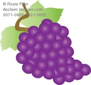 Grape clipart bunch grape Purple Purple Bunch Of Grapes